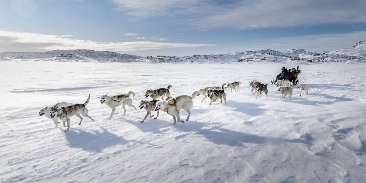 Drifting-snow-and-a-dog-sled-on-the-sea-ice-near-Tasiilaq-in-East-Greenland